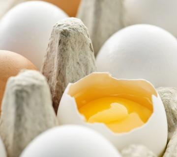 razbito jajce v kartonu
