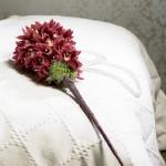 poročni šopek iz orhidej