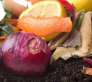 kuhinjski odpadki na kompostu