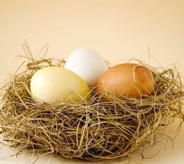 tri jajca v gnezdu