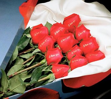 rdeče vrtnice z napisom