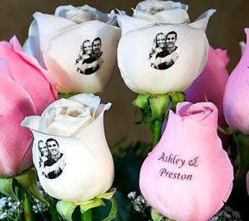roza in bele vrtnice z napisom in fotografijo