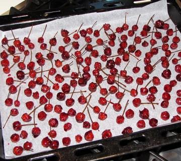 kandirane višnje s pecljem in koščico