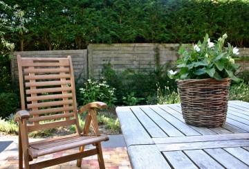 garden-1675235_1920