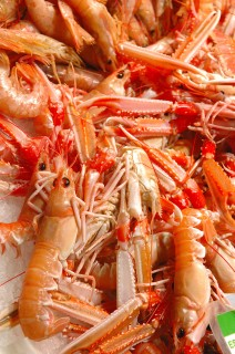 Fresh shrimp presented at a weekly fish market